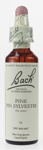 Picture of Bach Bach Pine Flower Remedy, 20ml