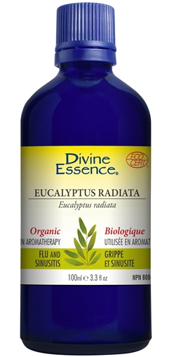 Picture of Divine Essence Eucalyptus Radiata (Organic), 100ml