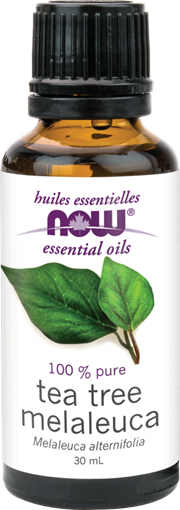 Picture of NOW Foods NOW Foods Tea Tree Oil, 30mL