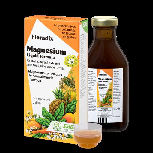 Picture of Salus Haus Salus Haus Floradix Magnesium Liquid, 250ml