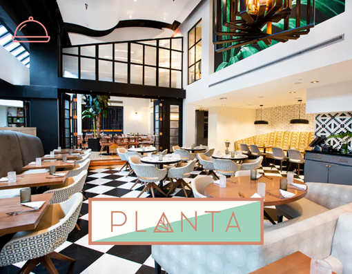 Picture of  Dinner at Planta